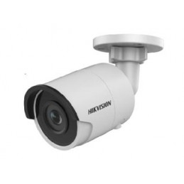 Hikvision DS-2CD2023G0-I(4mm)